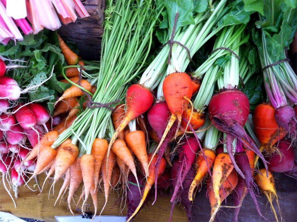Pacific City Farmers Market