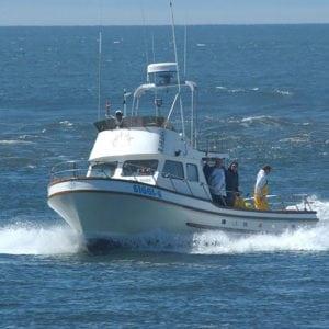 Siggi-G Fishing Charters