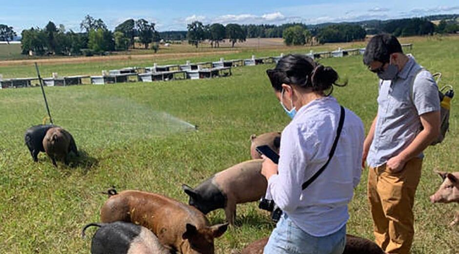 farm2forktours farm tour